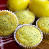 Low Carb Lemon Poppyseed Muffins by Highfalutin' Low Carb